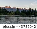 景色 風景 森林の写真 43789042