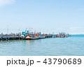 船 魚 釣りの写真 43790689
