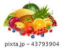 くだもの フルーツ 実のイラスト 43793904