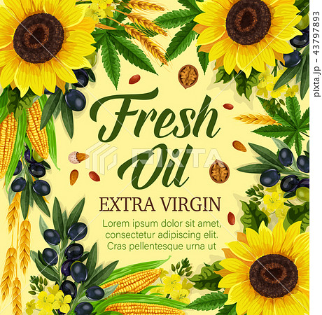 Natural cooking oil and vegetables 43797893