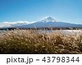 アジア圏 あき 秋の写真 43798344