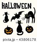 ハロウィン こうもり コウモリのイラスト 43806178