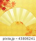金箔 背景 扇のイラスト 43806241