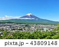 富士山 春 新緑の写真 43809148