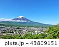 富士山 春 新緑の写真 43809151