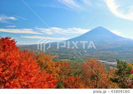 富士山と秋の紅葉 43809160