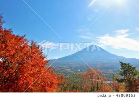 富士山と秋の紅葉 43809163