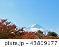 富士山 秋 紅葉の写真 43809177