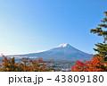 富士山 秋 紅葉の写真 43809180