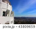ロサンゼルス風景 43809659