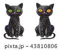 ねこ ネコ 猫のイラスト 43810806