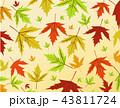 あき 秋 秋ののイラスト 43811724