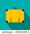 トラベル 旅行 アイコンのイラスト 43814951