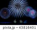 新潟県 長岡まつり大花火大会 比較明合成 43816401