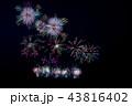 新潟県 長岡まつり大花火大会 比較明合成 43816402