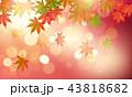 紅葉 秋 楓のイラスト 43818682