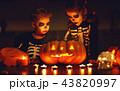 ハロウィン 子供 子の写真 43820997