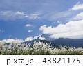 アジア人 アジアン アジア風の写真 43821175