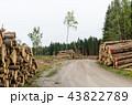 Log stacks by roadside 43822789