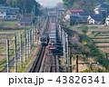 早朝の東北本線で旅客列車と交差する貨物列車金太郎 43826341