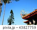 台南 43827759