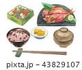 金目鯛 白バック 和食のイラスト 43829107