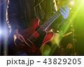 男 ギター 楽器の写真 43829205