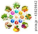 ビタミン 食 料理のイラスト 43829842