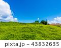 青空 残波岬 夏の写真 43832635