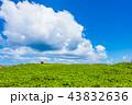 青空 残波岬 夏の写真 43832636