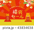 福袋 正月 猪年のイラスト 43834638
