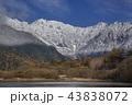 初冬の上高地大正池から初冠雪した北アルプス穂高連峰 43838072