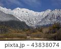 初冬の上高地大正池から初冠雪した北アルプス穂高連峰 43838074