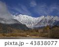 初冬の上高地大正池から初冠雪した北アルプス穂高連峰 43838077