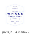 Polygonal Whale Badge on White 43838475