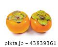 くだもの フルーツ 果実の写真 43839361