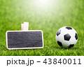 サッカー ボール 球の写真 43840011