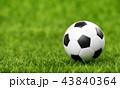 サッカー ボール 球の写真 43840364