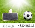ボール 球 サッカーの写真 43840818