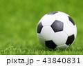 サッカー ボール 球の写真 43840831