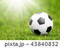 サッカー ボール 球の写真 43840832