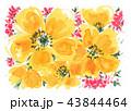 flowers18918pix7 43844464