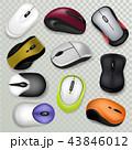鼠 ねずみ マウスのイラスト 43846012