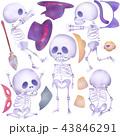 ガイコツと仮装グッズ 43846291