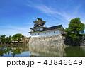 富山城 城 安住城の写真 43846649