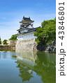 富山城 城 安住城の写真 43846801
