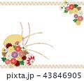 和柄 花 菊のイラスト 43846905