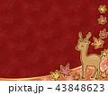 鹿 紅葉 秋のイラスト 43848623