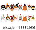 かわいい子犬と子猫たちのボーダーセット ハロウィン クリスマス 43851956