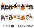 ベクター 猫 子猫のイラスト 43851962